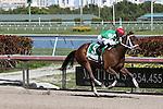 HALLANDALE BEACH, FL - FEBRUARY 27:   Cathryn Sophia #5 with jockey Javier Castellano on board wins the 32nd running of the Davona Dale G2 at Gulfstream Park on February 27, 2016 in Hallandale Beach, Florida. (Photo by Liz Lamont)