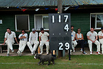 Ebernoe Horn Fair, Sussex 2017. Village cricket.