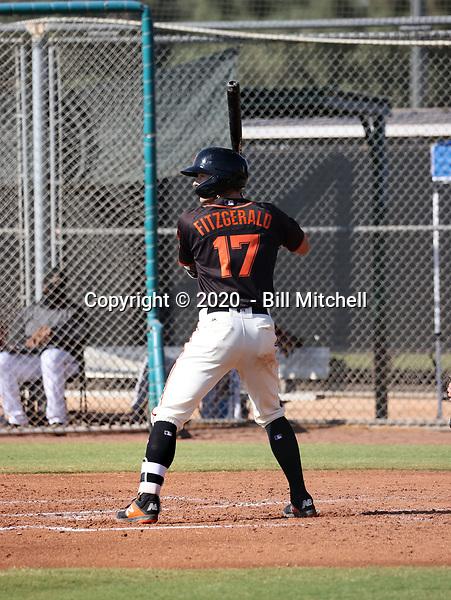 Tyler Fitzgerald - 2020 AIL Giants (Bill Mitchell)