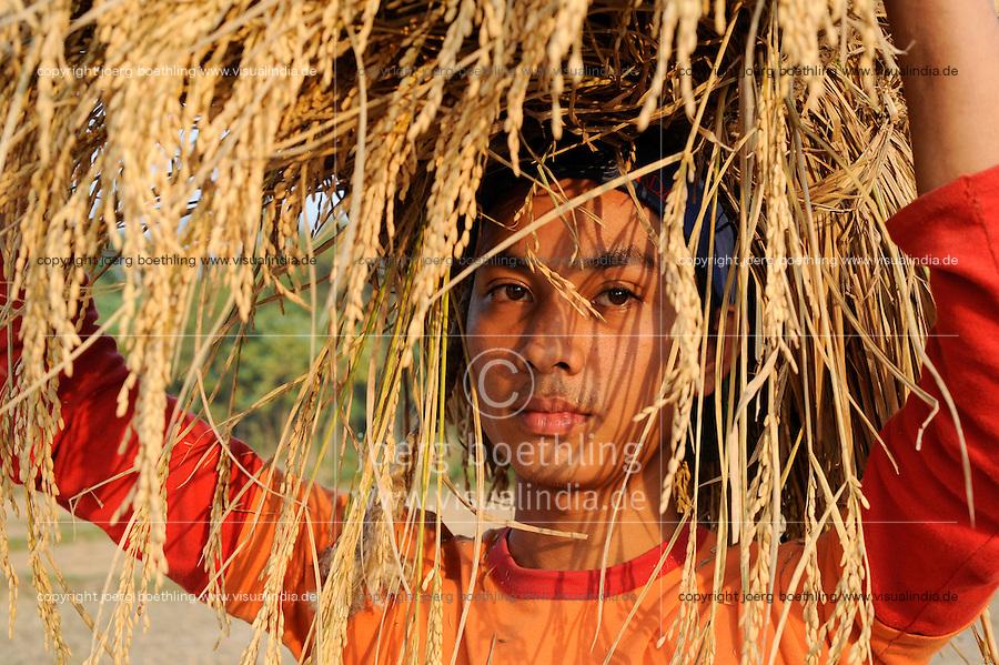 Bangladesh, Region Madhupur, Garo Jugendlicher bringt die Reisernte ein , Garos sind eine christliche u. ethnische Minderheit / BANGLADESD Madhupur, Garo boy carry rice crops after harvest, Garos is a ethnic and christian religious minority