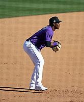 Elehuris Montero - Colorado Rockies 2021 spring training (Bill Mitchell)