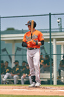 Baltimore Orioles Adley Rutschman (96) bats during a Minor League Spring Training game against the Pittsburgh Pirates on April 21, 2021 at Pirate City in Bradenton, Florida.  (Mike Janes/Four Seam Images)