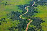 Wetlands of the Pantanal, Brazil
