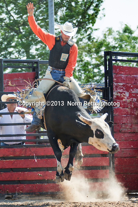 RAM Rodeo Tour, 21 July, 2013<br /> Rodeo action at Orangeville, Ontario, Canada<br /> Photo by Norm Betts <br /> tel:416 460 8743<br /> ©2013 Norm Betts, photog<br /> normbetts@canadianphotographer.com