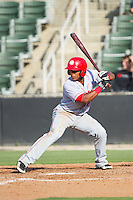 Wilmer Difo (6) of the Hagerstown Suns at bat against the Kannapolis Intimidators at CMC-Northeast Stadium on May 31, 2014 in Kannapolis, North Carolina.  The Intimidators defeated the Suns 3-2 in game one of a double-header.  (Brian Westerholt/Four Seam Images)