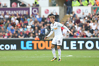 Tom Carroll of Swansea City in front of a LETOU advert during the Premier League match between Swansea City and Huddersfield Town at The Liberty Stadium, Swansea, Wales, UK. Saturday 16 October 2017