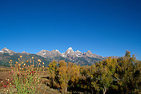 Grand Teton National Park, Wyoming, WY, USA - Grand Teton (Elev 4,197 m / 13,770 ft) and Teton Range Mountains, Autumn / Fall