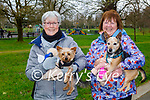 Enjoying a stroll in the Tralee town park on Sunday, l to r: Maire Dallecrode and Sheila Hughes with their dogs Pepsi and Prince.