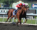October 24, 2009.Alex Solis riding Sunny Peace wins the 5th at Oak Tree, Santa Anita, Arcadia, CA