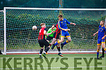 Mastergeeha defence under pressure as Brendan Delaney of Mainebank attempts a header in the box, in the Denny Div 2A league final