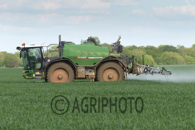 29-5-2021 Spraying fungicide on Winter wheat <br /> ©Tim Scrivener Photographer 07850 303986<br />      ....Covering Agriculture In The UK....