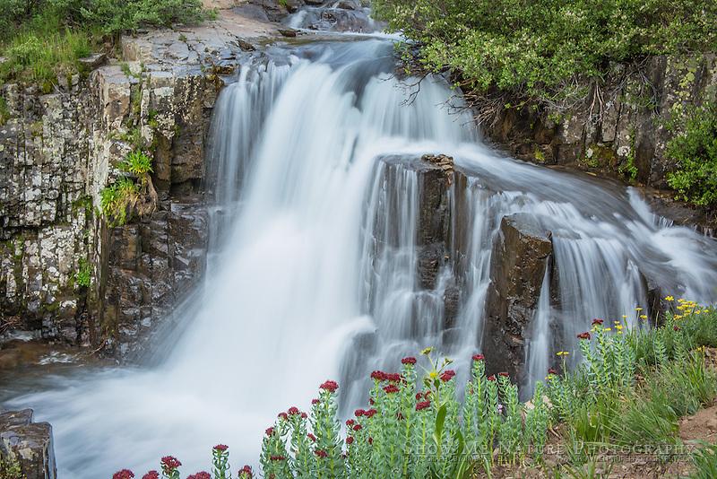 Mountain waterfall along Yankee Boy Basin