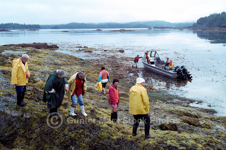 People exploring a Rocky Beach in Kyuquot Sound, along the Pacific West Coast of Vancouver Island, British Columbia, Canada