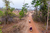 Villagers ride through a small forest near the village of Souch, near the Phnom Tnout Phnom Pok Wildlife Sanctuary, in northern Cambodia.