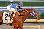 HALLANDALE BEACH, FL - MARCH 04:  Gunnevera (KY) #2 wth jockey Javier Castellano on board, wins the Xpressbet Fountain Of Youth Stakes (Grade II) at Gulfstream Park on March 04, 2017 in Hallandale Beach, Florida. (Photo by Liz Lamont/Eclipse Sportswire/Getty Images)