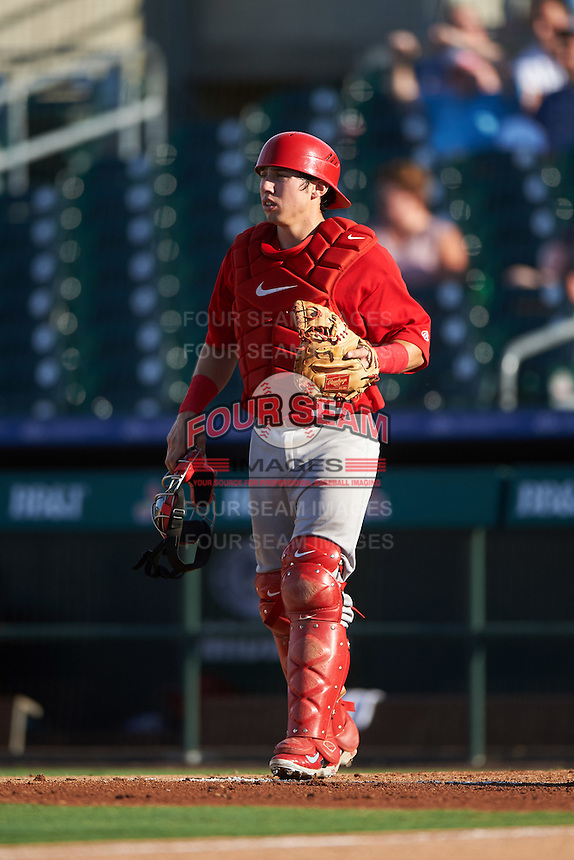 Palm Beach Cardinals catcher Stephen Zavala (35) during a game against the Jupiter Hammerheads on August 13, 2016 at Roger Dean Stadium in Jupiter, Florida.  Jupiter defeated Palm Beach 6-2.  (Mike Janes/Four Seam Images)