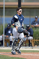 Catcher Luis Torrens (20) of the New York Yankees organization during a minor league spring training game against the Toronto Blue Jays on March 16, 2014 at the Englebert Minor League Complex in Dunedin, Florida.  (Mike Janes/Four Seam Images)