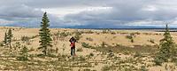 Hiker pauses in the Great Kobuk Sand Dunes in the Kobuk Valley National Park, Arctic, Alaska.
