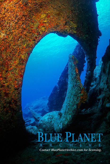 wreck of RMS Rhone, propeller and rudder, British Virgin Islands, Caribbean, Atlantic Ocean