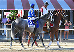 Zennor (no. 3), ridden by Joe Bravo and trained by Kiaran McLaughlin, wins the 4th running of the Lure Stakes for four year olds and upward on August 5, 2017 at Saratoga Race Course in Saratoga Springs, New York. (Bob Mayberger/Eclipse Sportswire)