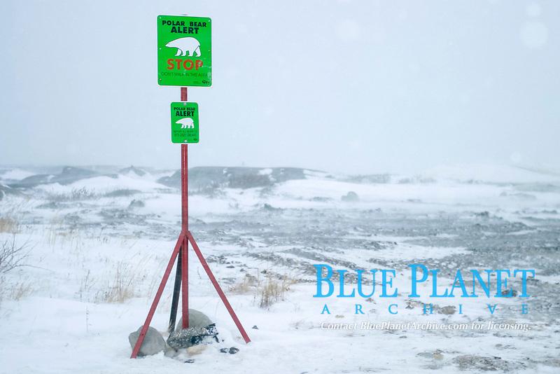 Polar Bear warning sign along the coast outside Churchill, northern Manitoba, Hudson Bay, Canada, USA, Ursus maritimus, polar bear, Ursus maritimus