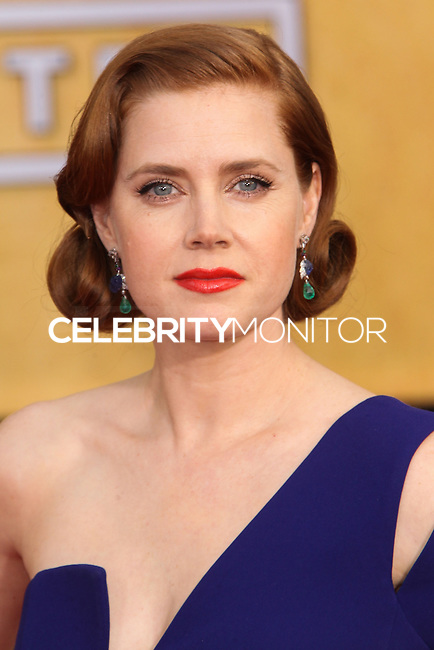 LOS ANGELES, CA - JANUARY 18: Amy Adams at the 20th Annual Screen Actors Guild Awards held at The Shrine Auditorium on January 18, 2014 in Los Angeles, California. (Photo by Xavier Collin/Celebrity Monitor)