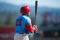 Spokane Indians first baseman Curtis Terry (28) at bat during a Northwest League game against the Vancouver Canadians at Avista Stadium on September 2, 2018 in Spokane, Washington. The Spokane Indians defeated the Vancouver Canadians by a score of 3-1. (Zachary Lucy/Four Seam Images)