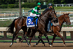"""ARCADIA, CA. SEPTEMBER 29: #3 Jefe, ridden by Kent Desormeaux,  in the post parade of the American Pharoah Stakes (Grade l) """"Win and You're In Breeders' Cup Juvenile Division"""" on September 29, 2018 at Santa Anita Park in Arcadia, CA. (Photo by Casey Phillips/Eclipse Sportswire/CSM)"""