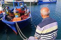 Europe/Italie/La Pouille/ Salvelletri di Fasano: Sur le port de pêche ,les pêcheurs trient leurs filets