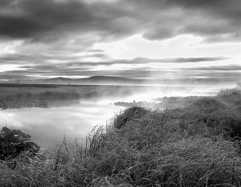Fog and sunrise on Klamath Marsh. Oregon