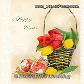 Isabella, EASTER, OSTERN, PASCUA, photos+++++,ITKE161425-BSTRWSK,#e# easter tulips