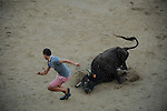 A participant is chased by a cow in the bullring of San Sebastian de los Reyes during a bull run festival, near Madrid, on august 28, 2014. © Pedro ARMESTRE