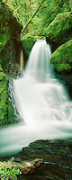Small falls in Willamette National Forest, Oregon