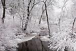 Ayer Road Meadows Conservation Area, Harvard Conservation Land, Harvard, MA, USA