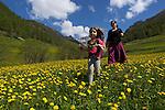 Paturages en  fleurs près du village de Souliers dominé par la crête des Oules entre Arvieux et Chateau Queyras<br /> Flowered high mountain pasture nearby Souliers village between Arvieux valley and Chateau Queyras valley