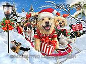 Lori, CHRISTMAS ANIMALS, WEIHNACHTEN TIERE, NAVIDAD ANIMALES, paintings+++++Dog and Cat Sledding_13_10in_72,USLS171,#xa#