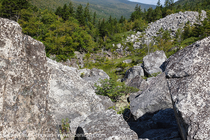Zealand Notch - Boulder field along the Zeacliff Trail in the White Mountains, New Hampshire during the summer months. This area was part of the Zealand Valley Railroad, a logging railroad in operation from 1886-1897.