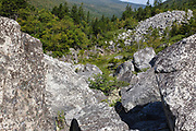 Zealand Notch - Boulder field along the Zeacliff Trail in the White Mountains, New Hampshire during the summer months. This area was part of the Zealand Valley Railroad, a logging railroad in operation from 1885-1897.