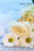 Helga, WEDDING,  photos, DTTH6565,#W# Hochzeit, boda