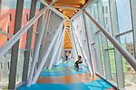 University of Louisville Physicians Novak Center for Children's Health Pedestrian Bridge | GBBN, Uzun + Case, Formation Studios