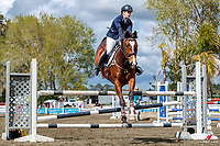 NZL-Kelly Angell rides Centavito. Class: 24 - Dunstan Horsefeeds Amateur Rider Series. 2020 NZL-Fiber Fresh GP SJ Show Spring Series Show. Woodhill Sands. Sunday 20 September. Copyright Photo: Libby Law Photography