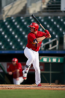 Palm Beach Cardinals Nolan Gorman (18) at bat during a Florida State League game against the Clearwater Threshers on August 9, 2019 at Roger Dean Chevrolet Stadium in Jupiter, Florida.  Clearwater defeated Palm Beach 5-3 in the first game of a doubleheader.  (Mike Janes/Four Seam Images)