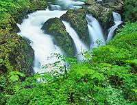 Sol Duc Falls. Olympic National Park, Washington.