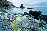 Weeds, ponds and dark volcanic rocks along the coast of Flores Island, Azores