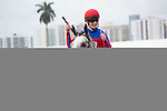 Hallandale Beach, FL- February 06: Nick Zito in the walking ring. Scenes from Donn Handicap Day at Gulfstream Park. (Photo by Arron Haggart)