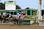 January 16, 2016: Stageplay with Florent Geroux up on the way to the finish in the Silverbulletday Stakes race in New Orleans Louisiana. Steve Dalmado/ESW/CSM