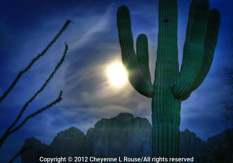 Full moon rise with Saguaro cactus - Arizona