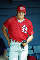 St. Louis Cardinals Ozzie Canseco (46) during Spring Training 1993.  (MJA/Four Seam Images)