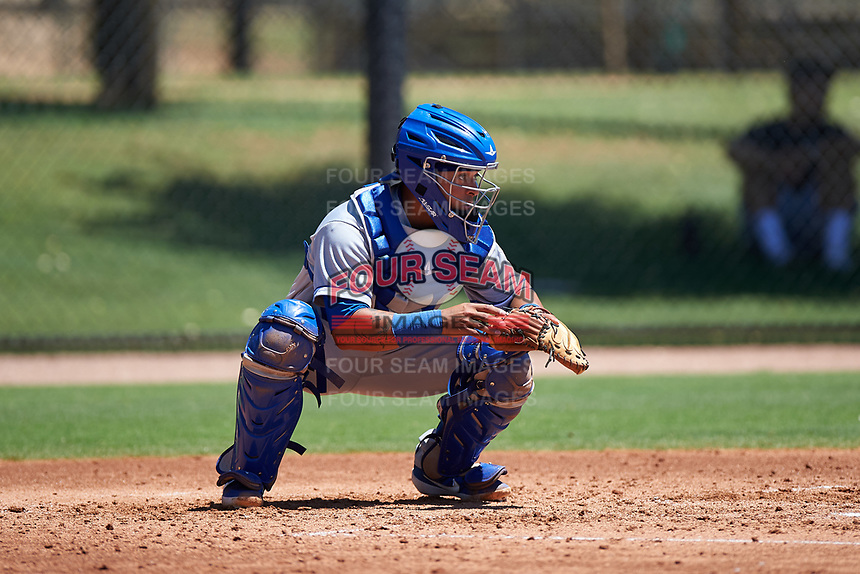 AZL Royals catcher Ricardo Sanchez (9) during an Arizona League game against the AZL Dodgers Lasorda on July 4, 2019 at Camelback Ranch in Glendale, Arizona. The AZL Royals defeated the AZL Dodgers Lasorda 4-1. (Zachary Lucy/Four Seam Images)