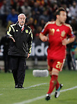 Spain's coach Vicente del Bosque during 15th UEFA European Championship Qualifying Round match. November 15,2014.(ALTERPHOTOS/Acero)